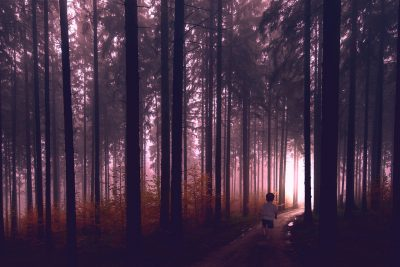 boy walking in dark forest